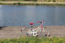 cyklostezka, kolo, cyklistika